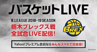 basket_live.jpg